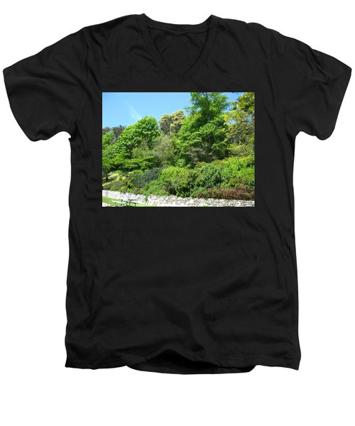 Stone Wall 2 Men's V-Neck T-Shirt by David Trotter