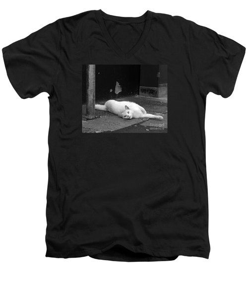 Street Cat Men's V-Neck T-Shirt