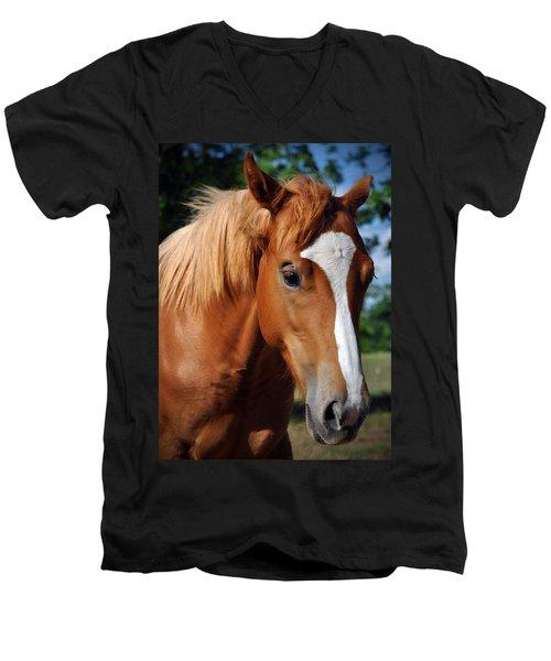 Stud Horse  Men's V-Neck T-Shirt