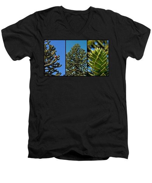 Study Of The Monkey Puzzle Tree Men's V-Neck T-Shirt