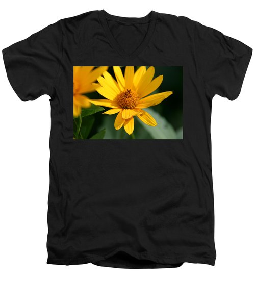 Men's V-Neck T-Shirt featuring the photograph Summer Dance by Denyse Duhaime