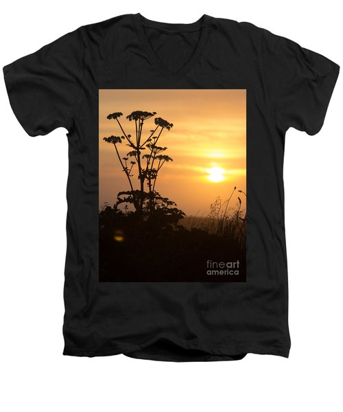 Summer Evening Men's V-Neck T-Shirt