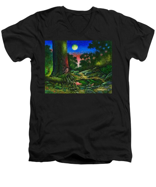Summer Twilight In The Forest Men's V-Neck T-Shirt