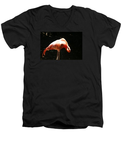 Men's V-Neck T-Shirt featuring the photograph Sun Bathing by Heidi Poulin
