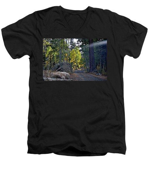 Sun Beam Men's V-Neck T-Shirt