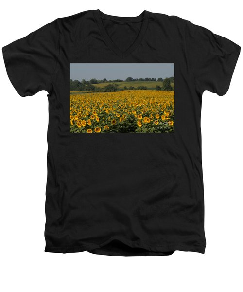 Sun Flower Sea Men's V-Neck T-Shirt