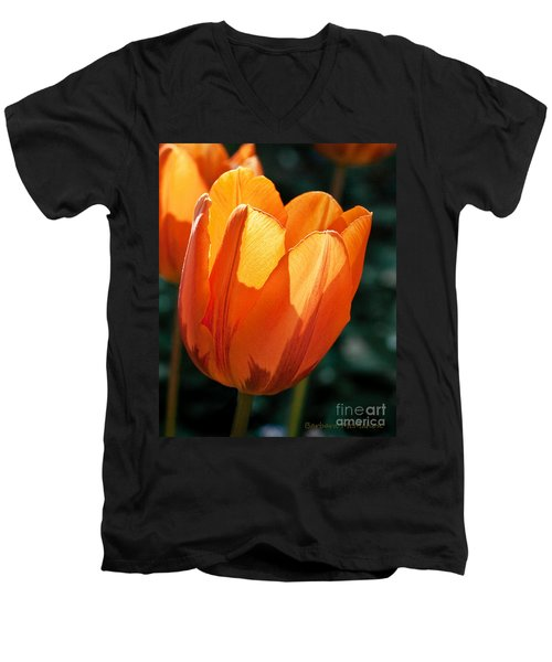 Men's V-Neck T-Shirt featuring the photograph Sun Kissed Tulip by Barbara McMahon