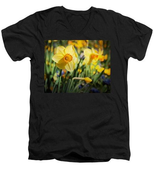 Sun Seeker Men's V-Neck T-Shirt