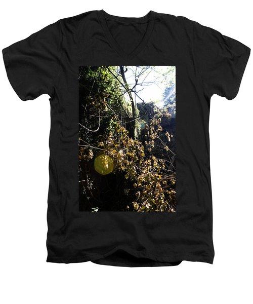 Sun Spot Men's V-Neck T-Shirt