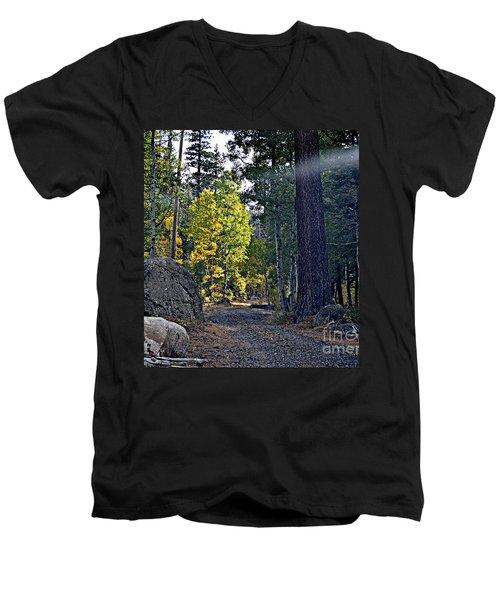 Sunbeam Men's V-Neck T-Shirt