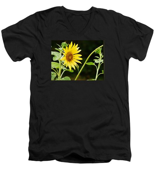 Men's V-Neck T-Shirt featuring the photograph Sunflower Cheer by VLee Watson