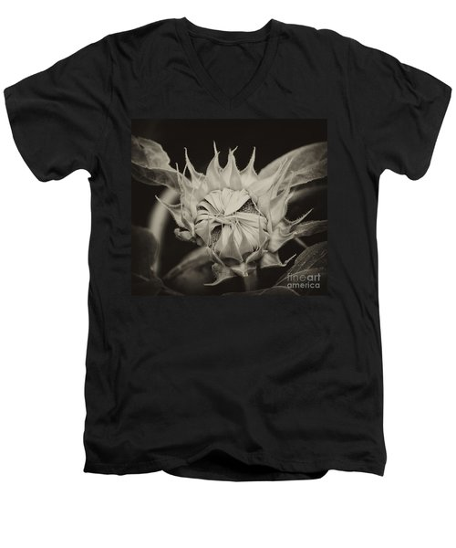 Men's V-Neck T-Shirt featuring the photograph Sunflower Grand Opening by Wilma  Birdwell