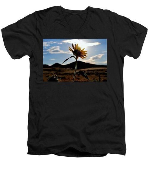Men's V-Neck T-Shirt featuring the photograph Sunflower In The Sun by Matt Harang