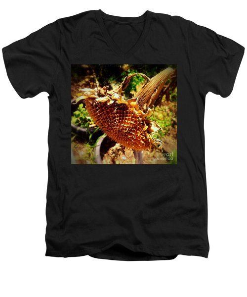 Men's V-Neck T-Shirt featuring the photograph Sunflower Seedless 1 by James Aiken