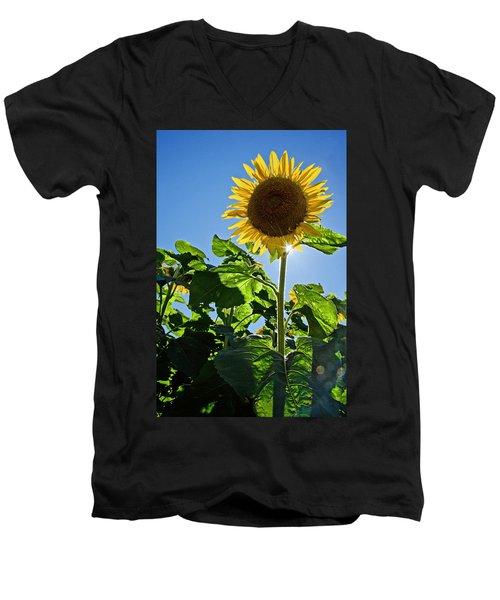 Sunflower With Sun Men's V-Neck T-Shirt