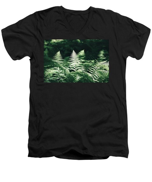 Men's V-Neck T-Shirt featuring the photograph Sunlight And Shadows-algonquin Ferns by David Porteus