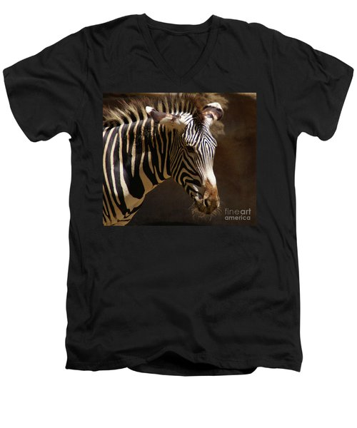 Men's V-Neck T-Shirt featuring the photograph Sunlit Stripes by Linda Shafer