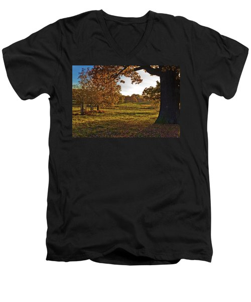 Sunny Richmond Autumn Men's V-Neck T-Shirt