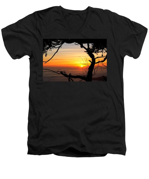 Sunset In A Tree Frame Men's V-Neck T-Shirt