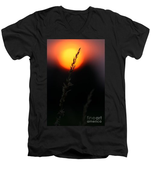 Sunset Seed Silhouette Men's V-Neck T-Shirt