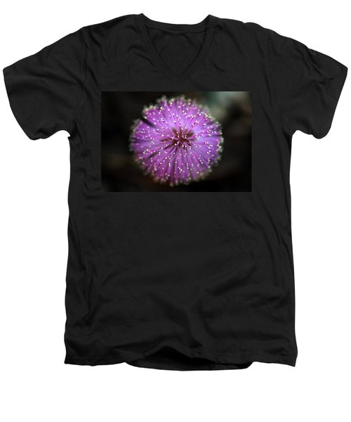 Men's V-Neck T-Shirt featuring the photograph Sunshine Mimosa by Greg Allore