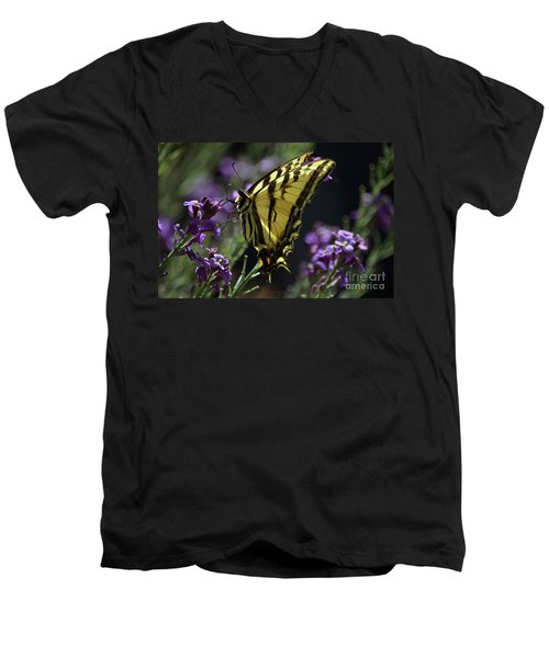 Swallowtail Butterfly On Lavender  Men's V-Neck T-Shirt