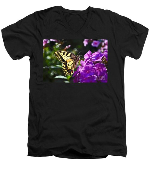 Swallowtail On A Flower Men's V-Neck T-Shirt by Maja Sokolowska