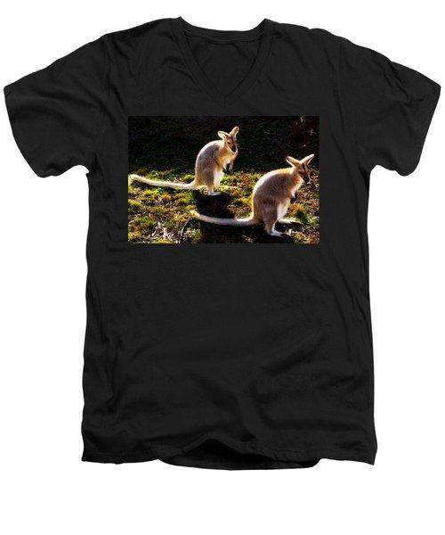 Red-necked Wallabies Men's V-Neck T-Shirt