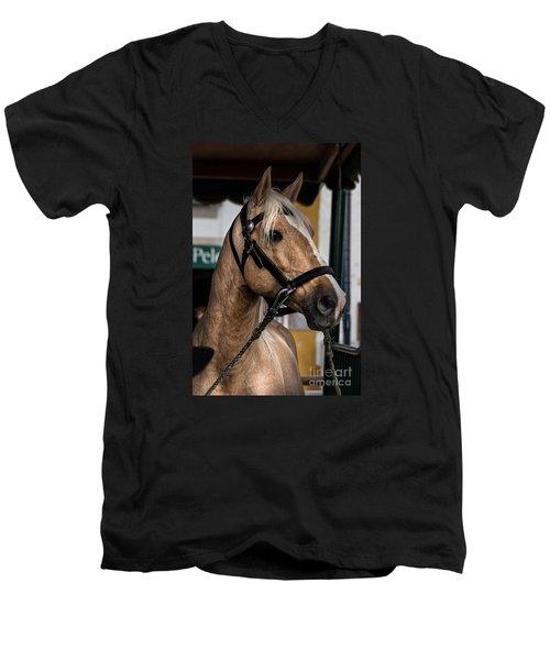 Sweet Caramel Men's V-Neck T-Shirt by Edgar Laureano