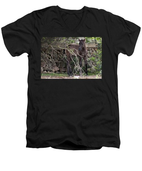 sweet heart - A tender foal wait his beloved mother  Men's V-Neck T-Shirt by Pedro Cardona