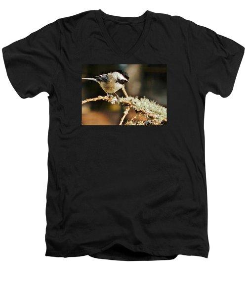 Sweet Little Chickadee Men's V-Neck T-Shirt by VLee Watson