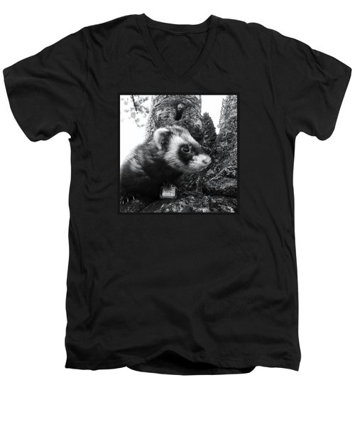 Sweet Little Nicky Chillin In A Tree Men's V-Neck T-Shirt by Anna Porter