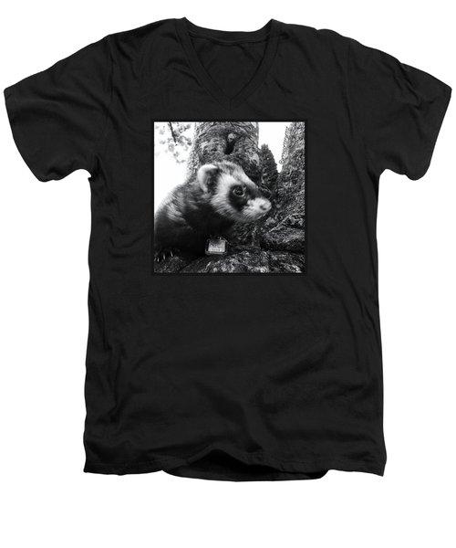 Sweet Little Nicky Chillin In A Tree Men's V-Neck T-Shirt