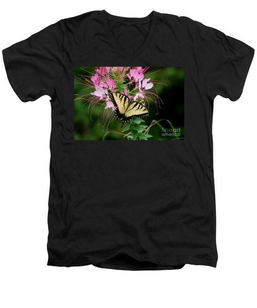 Sweet Swallowtail Men's V-Neck T-Shirt