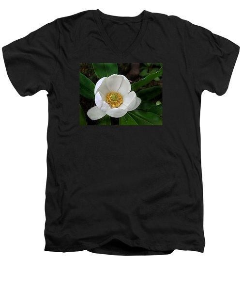 Sweetbay Magnolia Men's V-Neck T-Shirt