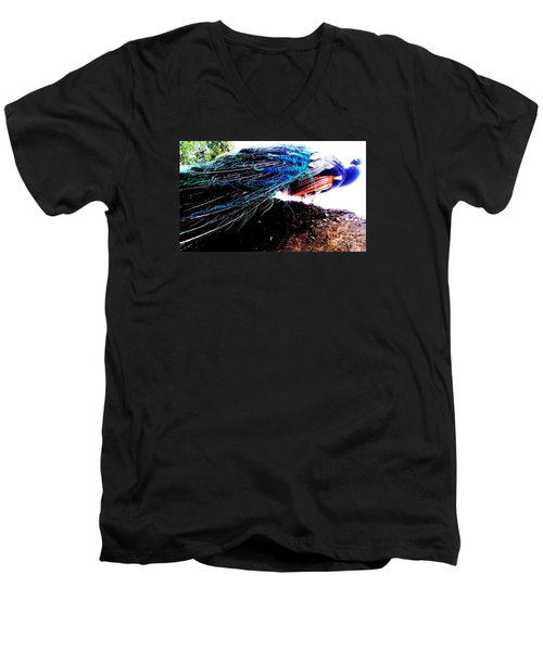Tail Of Peacock Men's V-Neck T-Shirt