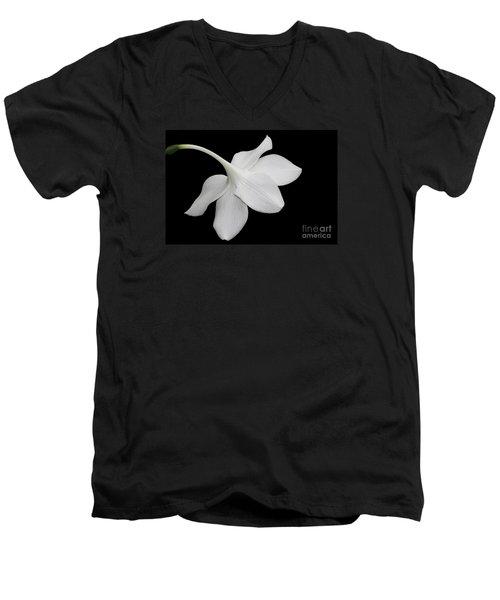 Take A Bow Men's V-Neck T-Shirt by Judy Whitton
