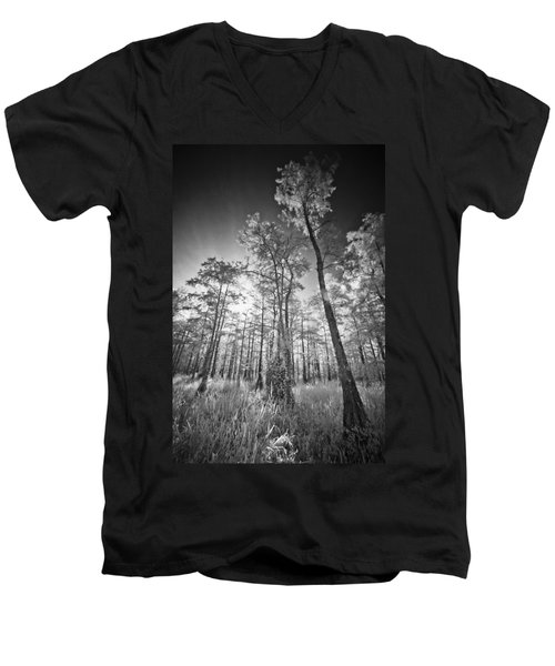 Tall Cypress Trees Men's V-Neck T-Shirt