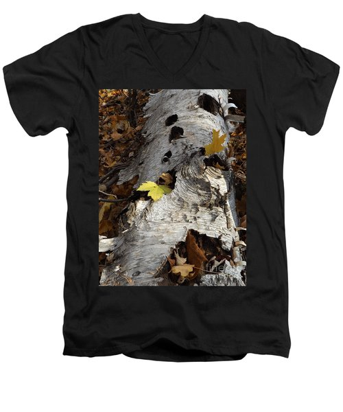 Tall Fallen Birch With Leaves Men's V-Neck T-Shirt