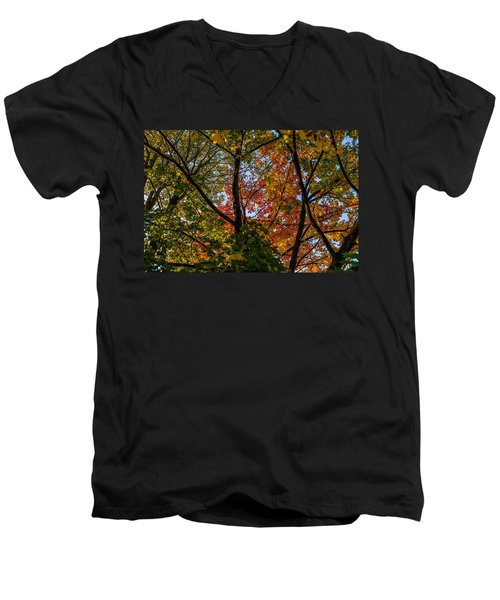 Tangle Men's V-Neck T-Shirt
