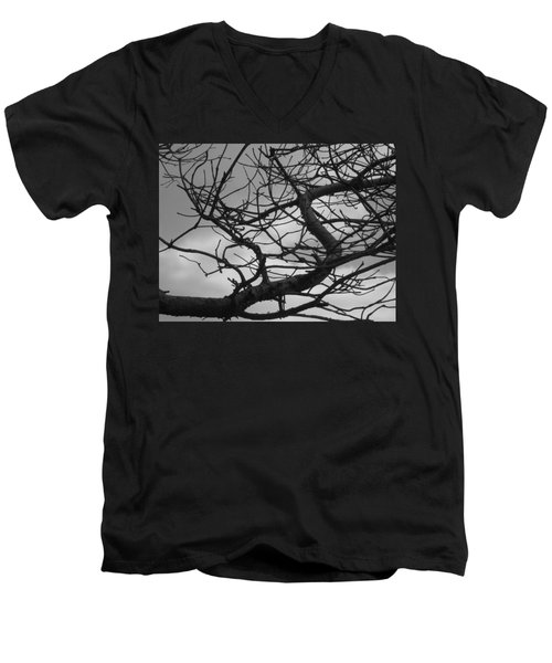 Tangled By The Wind Men's V-Neck T-Shirt