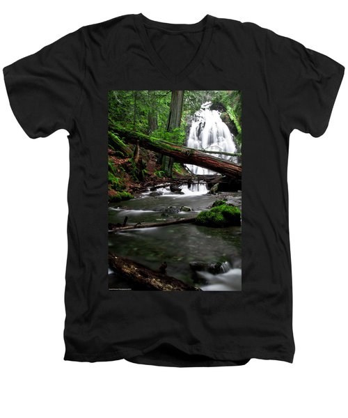 Temperate Old Growth Men's V-Neck T-Shirt