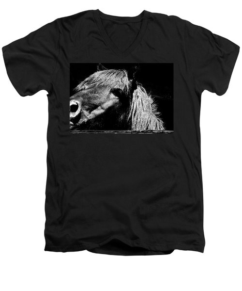 Teton Horse Men's V-Neck T-Shirt
