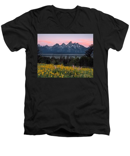 Teton Spring Men's V-Neck T-Shirt