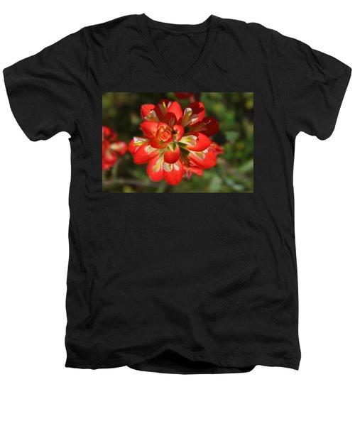 Texas Paintbrush Men's V-Neck T-Shirt by Lynn Bauer