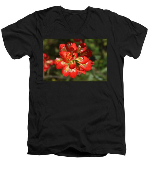 Texas Paintbrush Men's V-Neck T-Shirt
