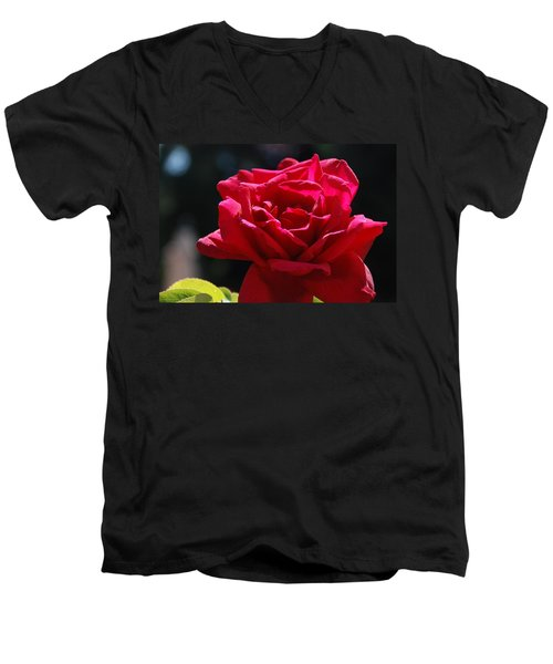 That Which We Call A Rose Men's V-Neck T-Shirt