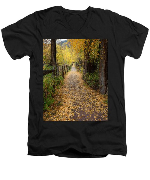 The Aspen Trail Men's V-Neck T-Shirt