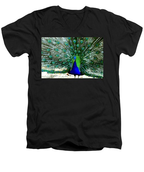 Men's V-Neck T-Shirt featuring the photograph The Beautiful Plumage by Kathy  White
