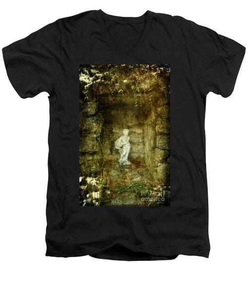 The Cold Flower Boy Men's V-Neck T-Shirt